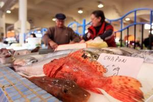 Cannes marché poisson commerce personnage vendeur marchand
