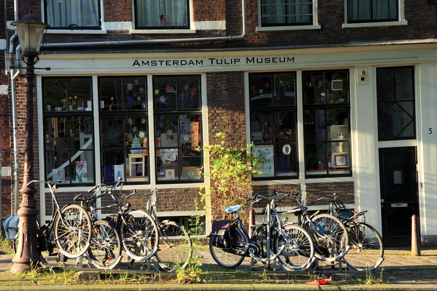 Le tulip Museum Amsterdam
