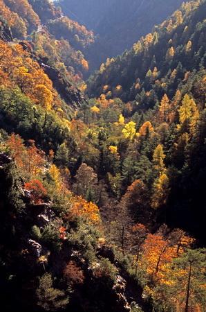 La vallée colorée