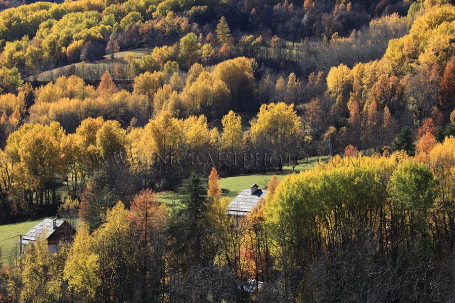 vallee du haut var en automne