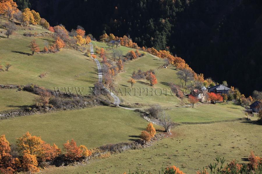 vallee du var paysage automne