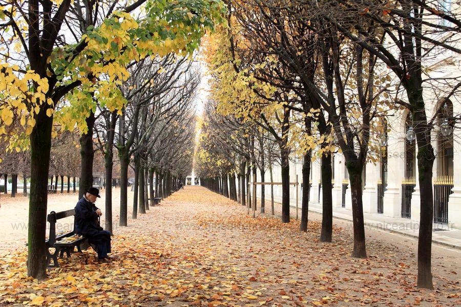 L'automne d'une vie