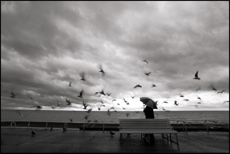 Photographie d'art en noir et blanc//Valéry Trillaud