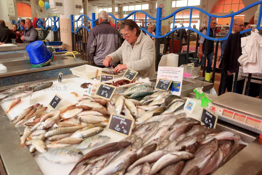 Marché Forville Cannes, marché aux poissons//V.Trillaud/www.niceartphoto.fr
