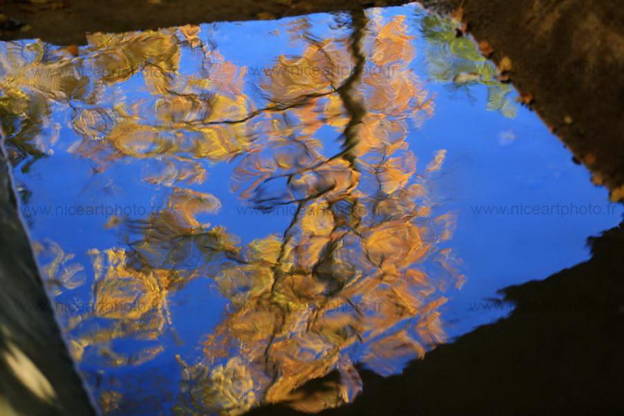 reflet feuillage automne impressionniste